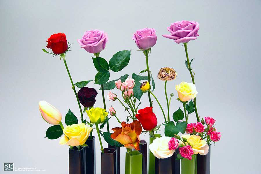 Flower Group